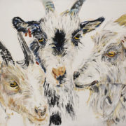 Claire's goats 50x60cm. Billy and his friends