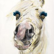 Glamour Horse. Sam James Fine Art