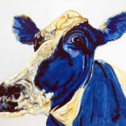 Gertrude Cow 50x60cm. Sam James Fine Art