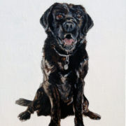 Black Lab. Sam James Fine Art
