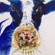 Betsy the Cow. 50x60cm. Sam James Fine Art