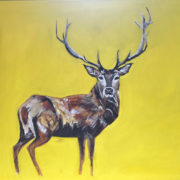 Red Stag 50x60cm. Sam James Fine Art