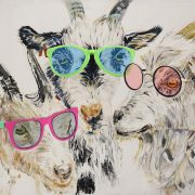 Glamour Goats. Sam James Fine Art.