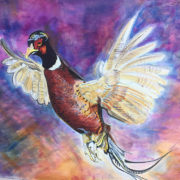 Pheasant in flight. 50x60cm. Sam James Fine Art