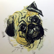 Ellie Pug - Private Commission 25x30cm. Sam James Fine Art