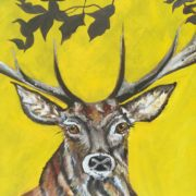 Stag Head. 50x60cm.. Sam James Fine Art