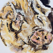 Steve's Pig 40x50cm. Sam James Fine Art