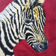 Zebra 40x50cm. Sam James Fine Art