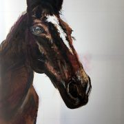 Thoroughbred Race Horse - Private Commission. 60x90cm